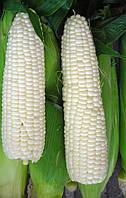 Семена кукурузы Снежная Королева, 1 кг