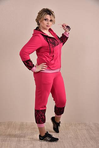 Спортивный костюм больших размеров 0253 малина 48-74, фото 2