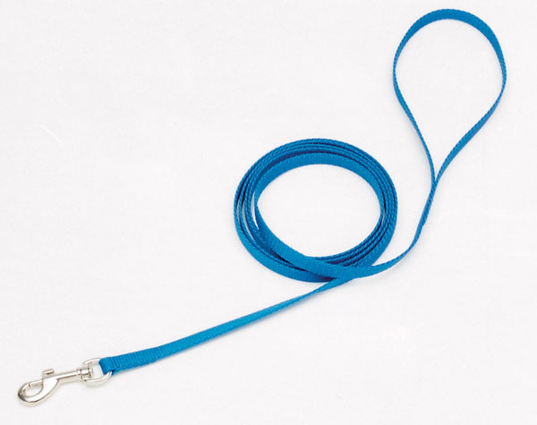 Coastal Nylon поводок для собак, 1смХ1,8м