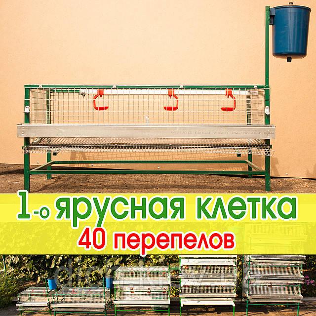 Клетка для 40 - 50 перепелов, металлическая
