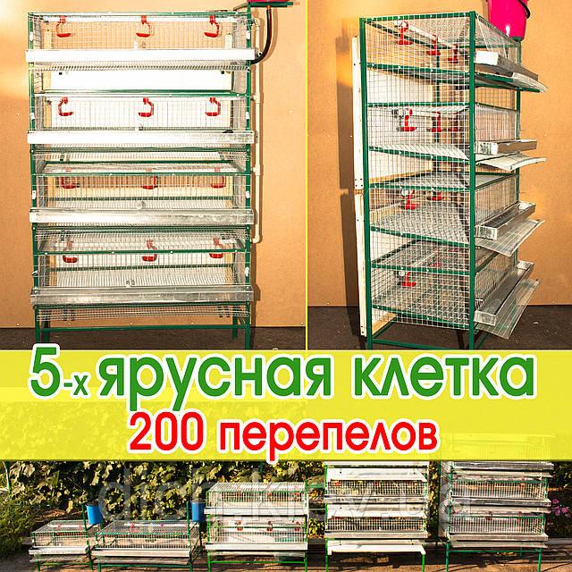 Клетка содержания 200 - 250 перепелов