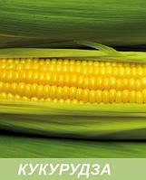 Мікродобриво для кукурудзи