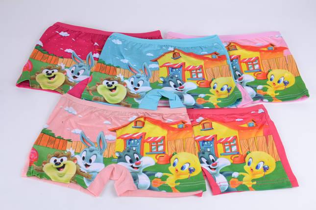 "Трусики-шорты на девочку ""Bugs Bunny"" (0994L) | 10 шт., фото 2"