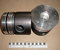 Поршень Д-245 (С) 245-1004021