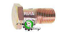 Болт М14х1,5х30 топл.и масл. трубок 310096-П29