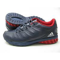 Кроссовки мужские Adidas daroga