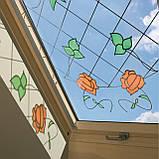 Мансардні вікна FAKRO, фото 2