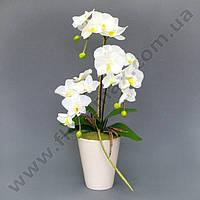 Декорация фаленопсис К15.014