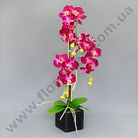 Декорация фаленопсис К15.015