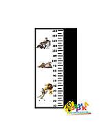 Детские ростометры меловые Мадагаскар