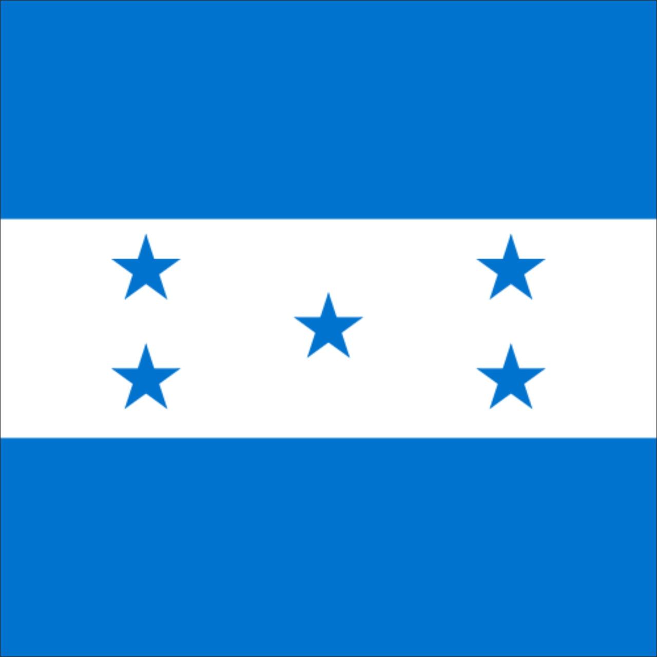 Флаг Гондураса (Аппликация) - (1м*1.5м)