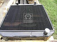 Радиатор водяного охлаждения ЛАЗ 699 (4-х рядный) (ШААЗ). Р699-1301010