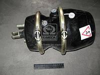 Камера тормозная с пружинным энергоаккумулятором (в сборе,тип 30/30) МАЗ,МЗКТ (Белкард).