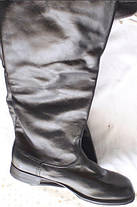 Хромовые сапоги, фото 3