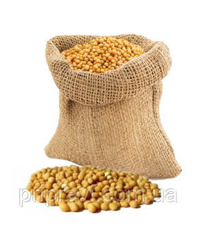 Горчица желтая семена, вес.