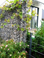 Габионный забор для дачи