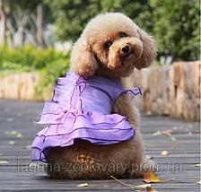 """Платье для собаки""""ЛИЛИАНА"""" размеры XS, S, M, L, XL, фото 2"""