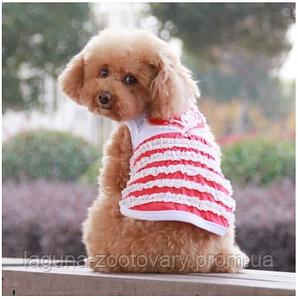 Футболка для собак CAN-CAN,  красный, размер XS, M, L, XL