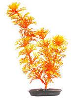 Растение пластиковое Ambulia Hagen Marina (Амбулия оранжевая) 20 см