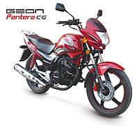 Мотоцикл GEON Pantera (CG 150) 2016, фото 1