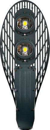 Уличный светильник Cobra LED 80W, фото 2