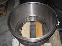 Барабан тормозной BPW (RIDER). RD 31.288.022.200