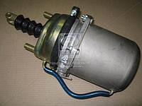Камера тормозная с пружинным энергоаккумулятором (в сборе,тип 20/20) (покупн. КамАЗ). 661-3519100