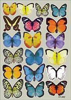 Интерьерная наклейка на стену бабочки 3D разноцветные