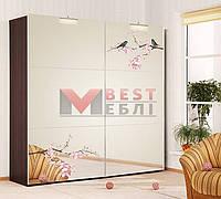 Шкаф-купе Ф-2230 (4-х дверный 2,8м фасад зеркало с рисунком) серии Хай-тек