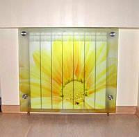 Декоративный стеклянный экран на батарею