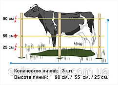 Электропастух Corral NA100, комплект для коров на периметр 500 м (в одну линию)