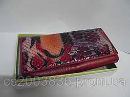 Кошелек Cossroll женский А12-5242-4, кошельки, оригинальные подарки, женские кошельки, портмоне