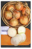 Купить семена Лук озимый Экстра Эрли Голд Ф1 (100 000 семян)