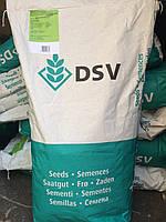 Газонная трава DSV (Euro Grass) Lippa-Liliput Лилипут 10 кг, Германия