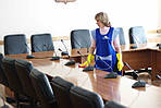 Уборка офисов в  Харькове и Киеве (генеральная, контрактная, ежедневная) по договору, фото 4