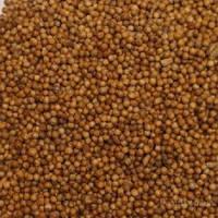 Семена рыжея /рыжика посевного/, 500 г