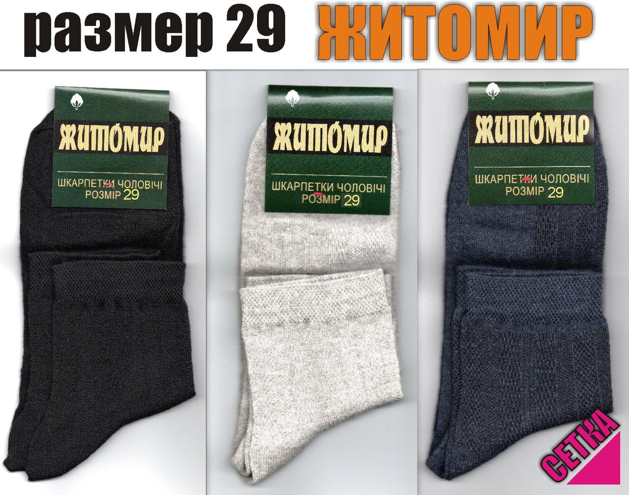 Носки мужские ассорти с сеткой Житомир 29 размер. НМЛ-06138