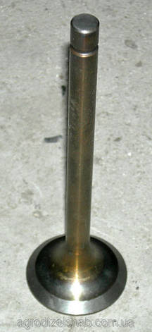 Головка блока цилиндров ЮМЗ с клапанами, фото 2