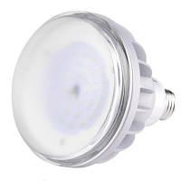 Светодиодная лампа для растений Brille E27 15W IP65 GROW