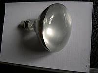 Лампа ЗК 220х300
