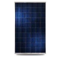 Kingdom Solar KD-M250