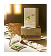 Зеленый чай VISION с лемонграссом, фото 9