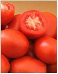 Купить семена Томат Арте F1 (1000 семян)