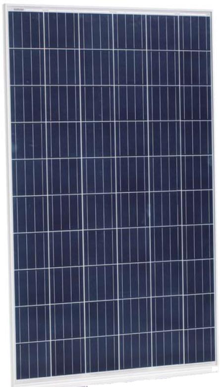 Солнечная батарея Jinko Solar JKM260P-60
