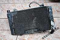 Радиатор охлаждения двигателя + вентилятор Honda CBR1000 Dual