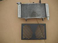 Радиатор охлаждения двигателя + вентилятор + защита Honda CBR500