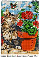 Схема для вышивки бисером Волшебный котик