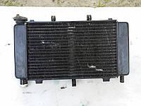 Радиатор охлаждения двигателя Yamaha Fazer FZ6