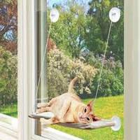 Оконная лежанка для кота. Оконная кровать SUNNY SEAT CAT BED