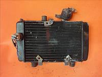 Радиатор охлаждения двигателя Yamaha Majesty 125, 150 MBK DODO